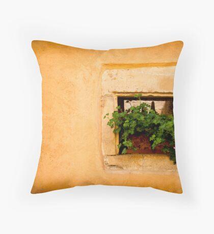Beautiful Window 3 Throw Pillow