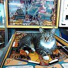 Pinball Cat with Lost World by 904PinballZine