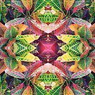 """""""Fall Through a Kaleidoscope"""" by kcd-designs"""