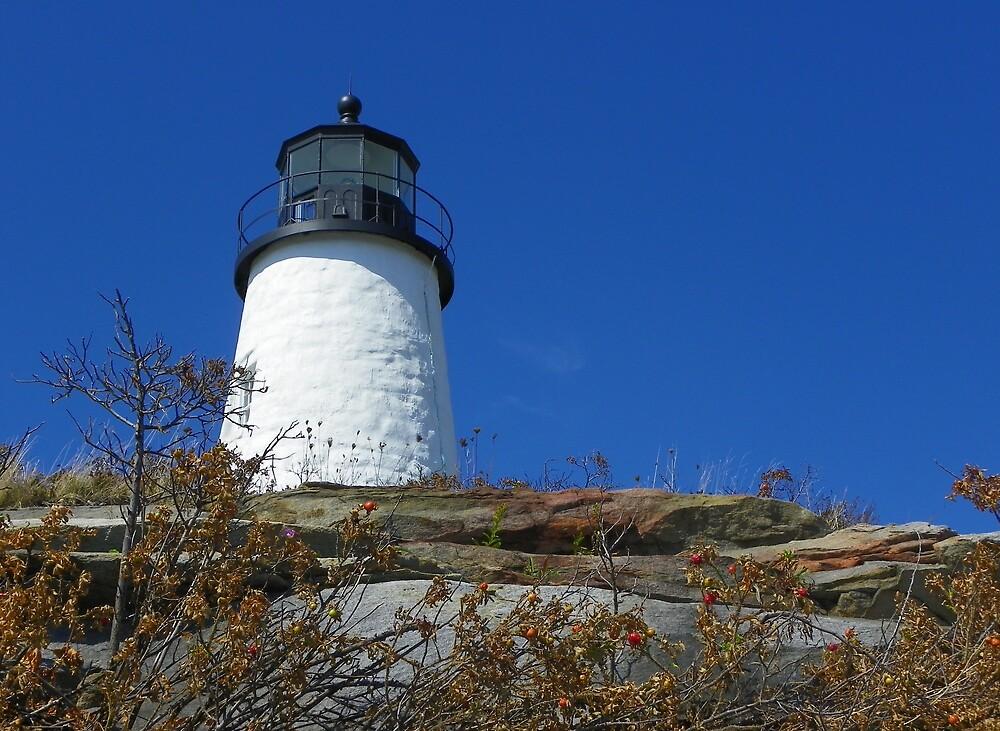 Pemiquid Point  Lighthouse, Maine by irmajxxx