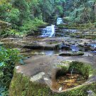 Macquarie Pass National Park - 2 by Ryan Conyers