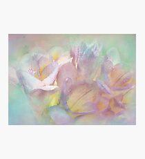dream of spring Photographic Print