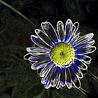Psychedelic Daisy by BobJohnson