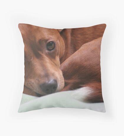 A Little Rascal Throw Pillow