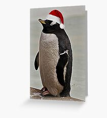 Merry Christmas Mr Penguin Greeting Card
