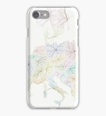 New Europe iPhone Case/Skin
