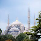 Blue Mosque by Jenn Louise