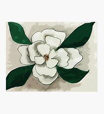 white Magnolia bloom, watercolor Photographic Print