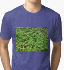 Dew on green plants that grow from the fallen yellow leaves Tri-blend T-Shirt