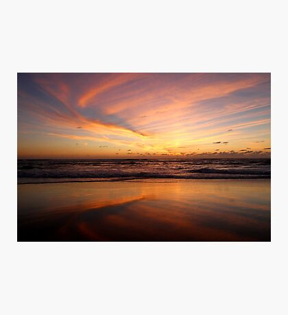 Feathered Sunset Photographic Print