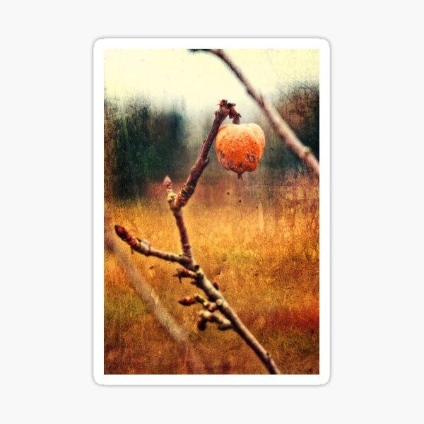 verdorbener Apfel Sticker