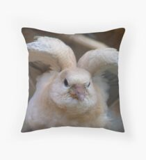 Look Mum..I Can Make Angel Wings!! - Juvenile Dove - NZ Throw Pillow
