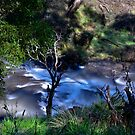 Paddys River, A Little Falls by bazcelt