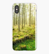 Faerie Realm iPhone Case/Skin