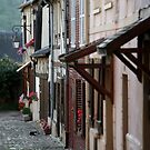 French Cottages by Samantha Higgs