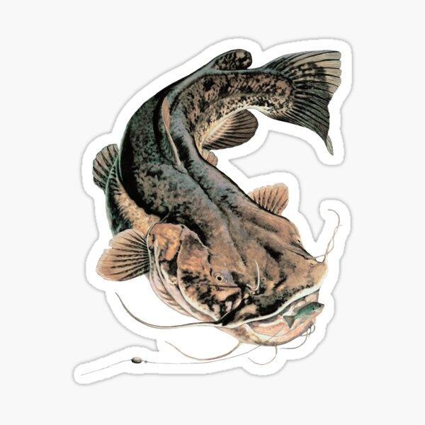 Pêche au silure à tête plate Sticker