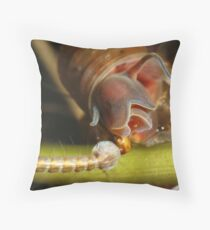 Mosquito Larvae Throw Pillow