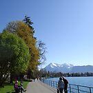 nature lake by fladelita