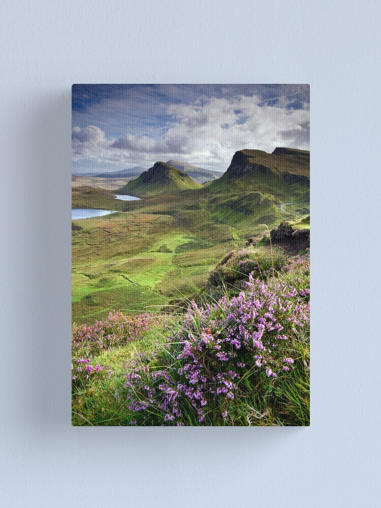 Alternate view of Scotland: My Bonny Heather Canvas Print
