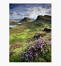 Scotland: My Bonny Heather Photographic Print