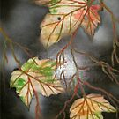Marbled Maples II by linmarie