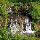 Hidden Falls by Mechelep