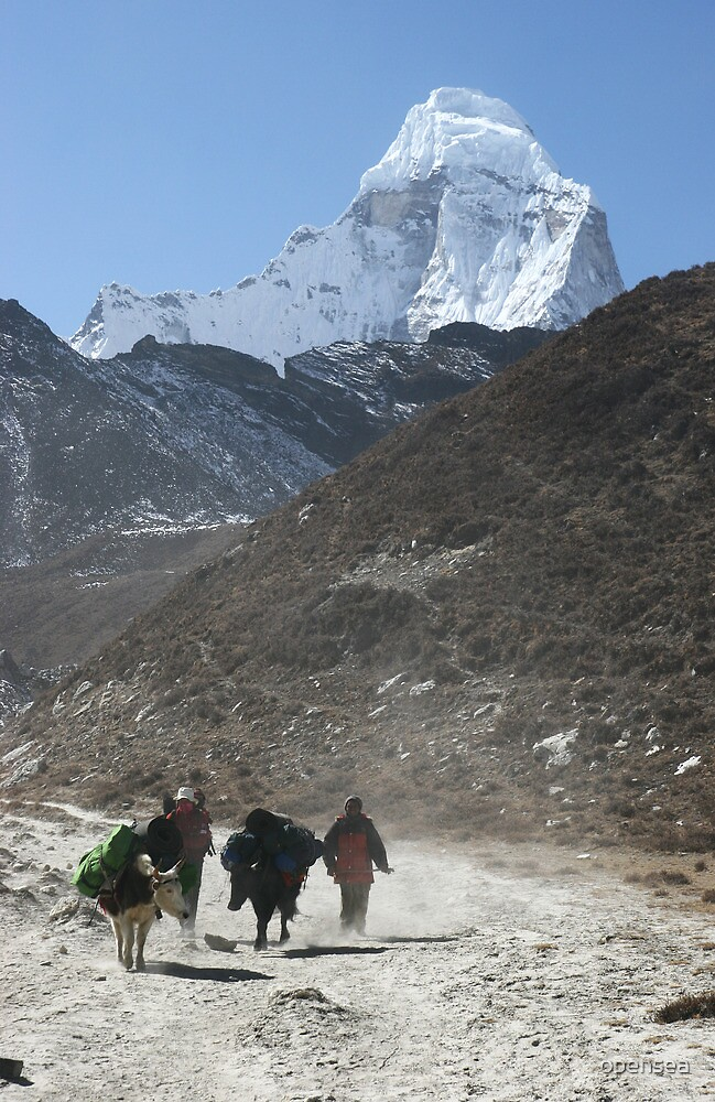Porters in the Imja Valley by opensea