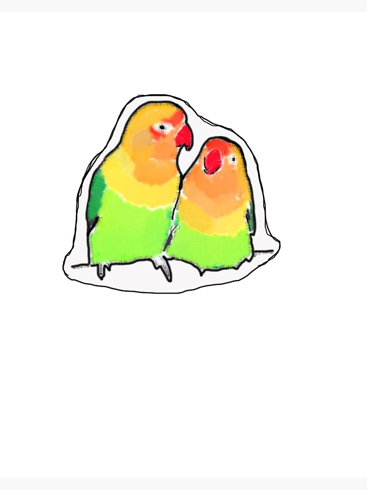 Love Birds Rainbow Birds Drawing Valentine S Day Art Board Print By Gracefullyslick Redbubble