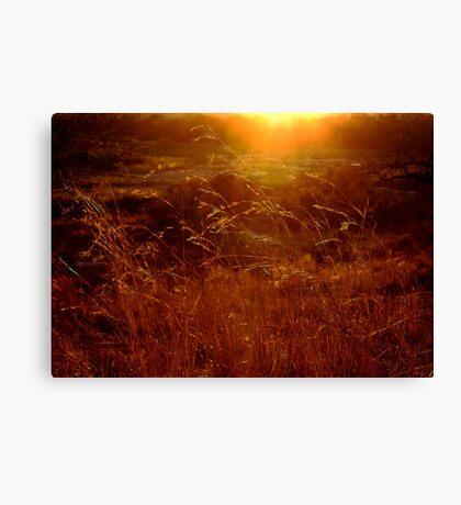 Toulon Sunset Canvas Print