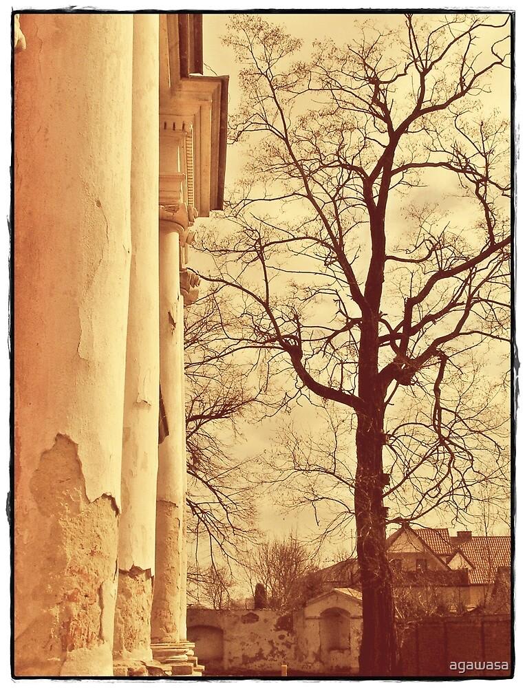 forgotten palace  by agawasa