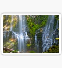 Partial Proxy Falls with Rainbow Sticker