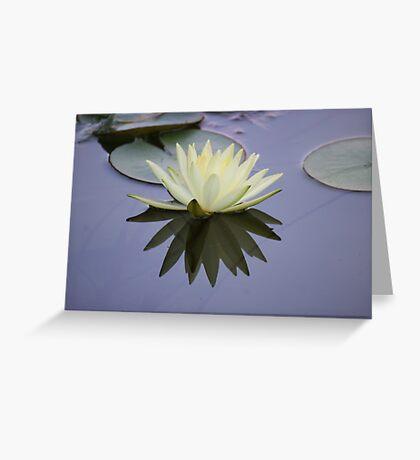 Beautiful Flower, Beautiful Reflection Greeting Card