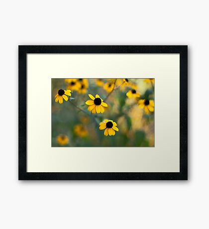 Yellow Softness Framed Print