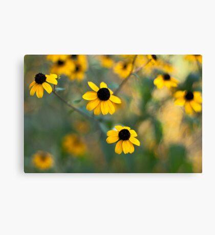 Yellow Softness Canvas Print