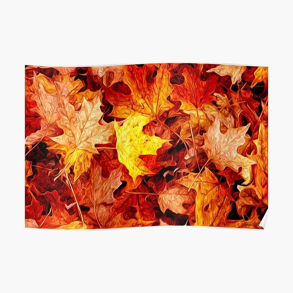 Repro Postcard: Fall Forest Gold Autumn Scene Yellow /& Orange Leaves