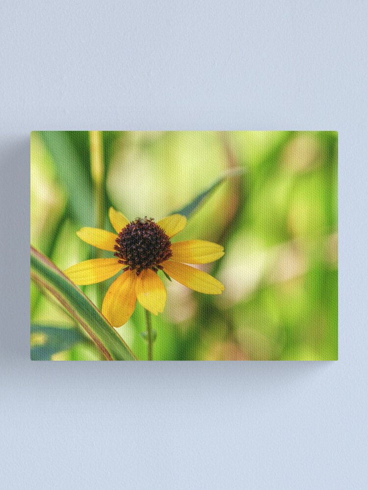 Alternate view of And A Tiny Spider On Top Canvas Print