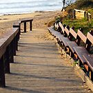 Boardwalk to Dicky Beach   by W E NIXON  PHOTOGRAPHY