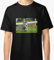 Lunchtime in the Pasture Classic T-Shirt