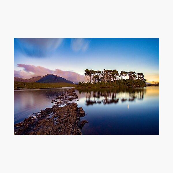 Pine Island, Connemara, Galway, Pre-Dawn Photographic Print