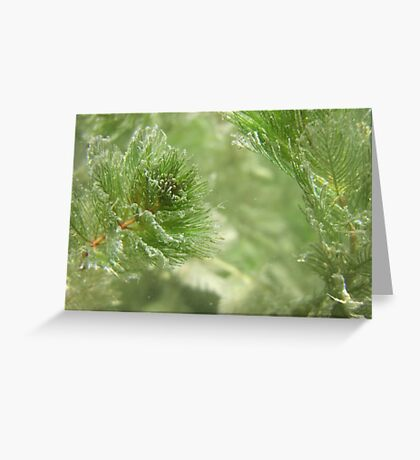 Christmas Weed  Greeting Card