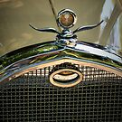 Packard Grill by Xcarguy