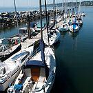 Sailboats at the Pier by MaluC