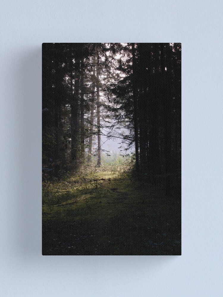 Alternate view of Forest pathway in morning lighting Canvas Print