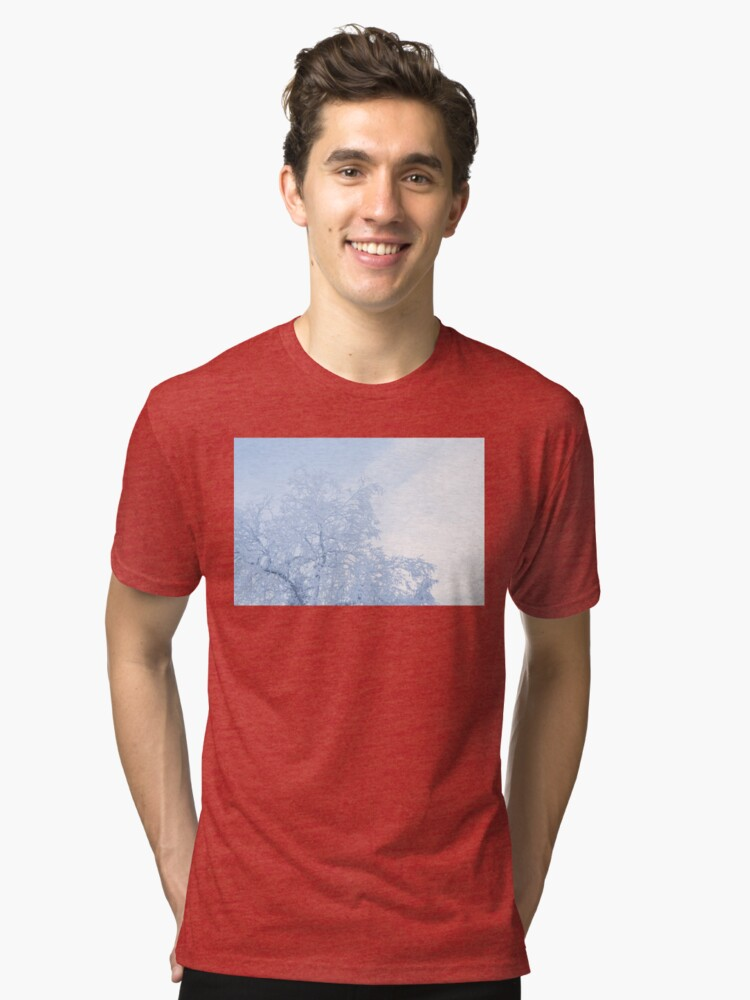 Alternate view of Tree covered in hoarfrost and sky Tri-blend T-Shirt