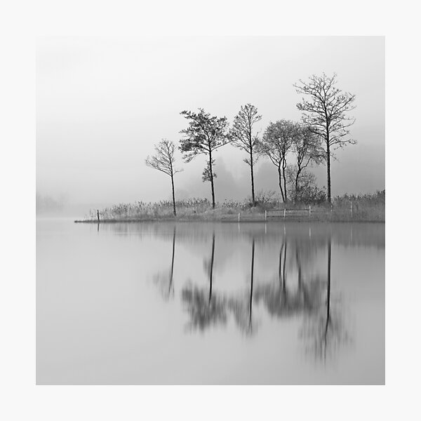 Fine Trees from the misty shore of Loch Ard Photographic Print