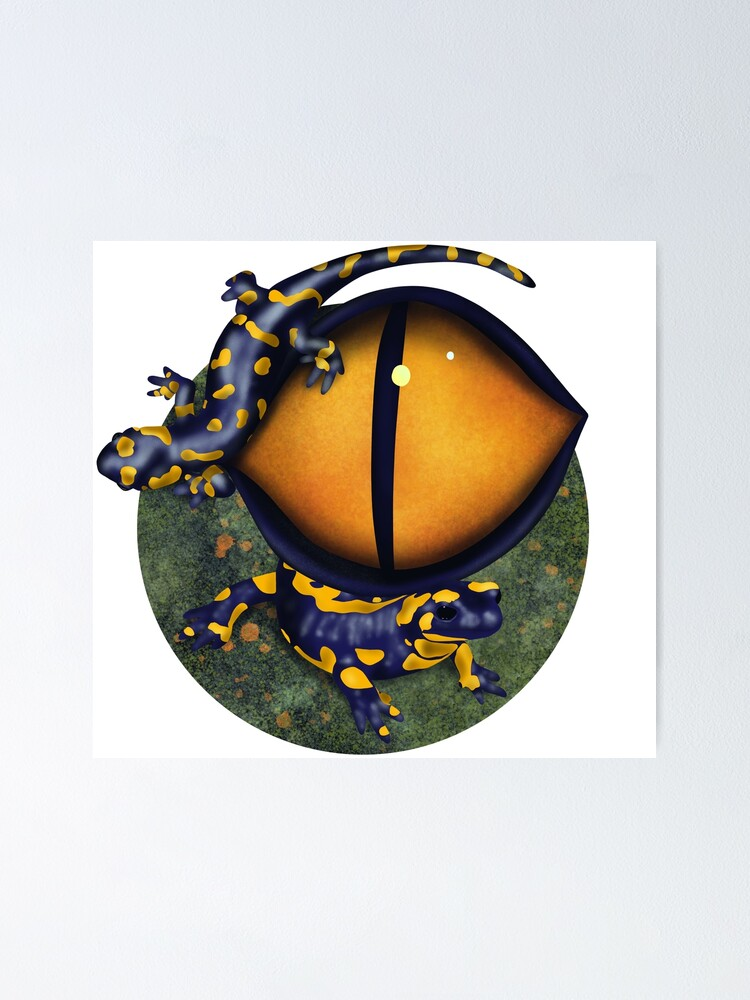 Alternate view of The eye of the salamander Poster