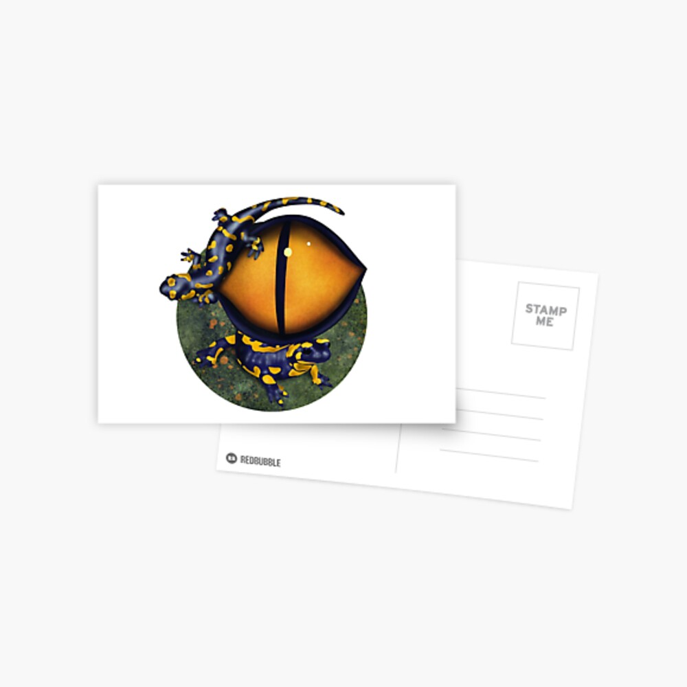 The eye of the salamander Postcard