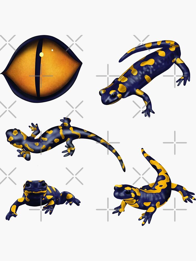 The eye of the salamander by nobelbunt