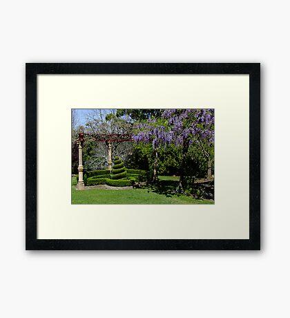 Wisteria Arbour Framed Print