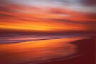 Amber Coast by David Alexander Elder